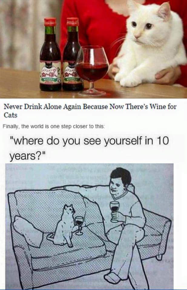 cat-never-drinks