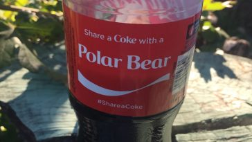 polar-bear-coke