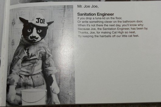 wtf-hilarious-funny-cat-yearbook-cat-photos-yearbook-for-cats23