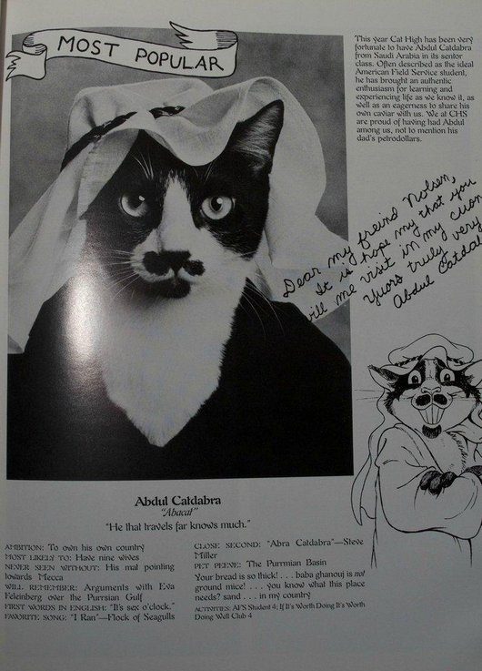 wtf-hilarious-funny-cat-yearbook-cat-photos-yearbook-for-cats9